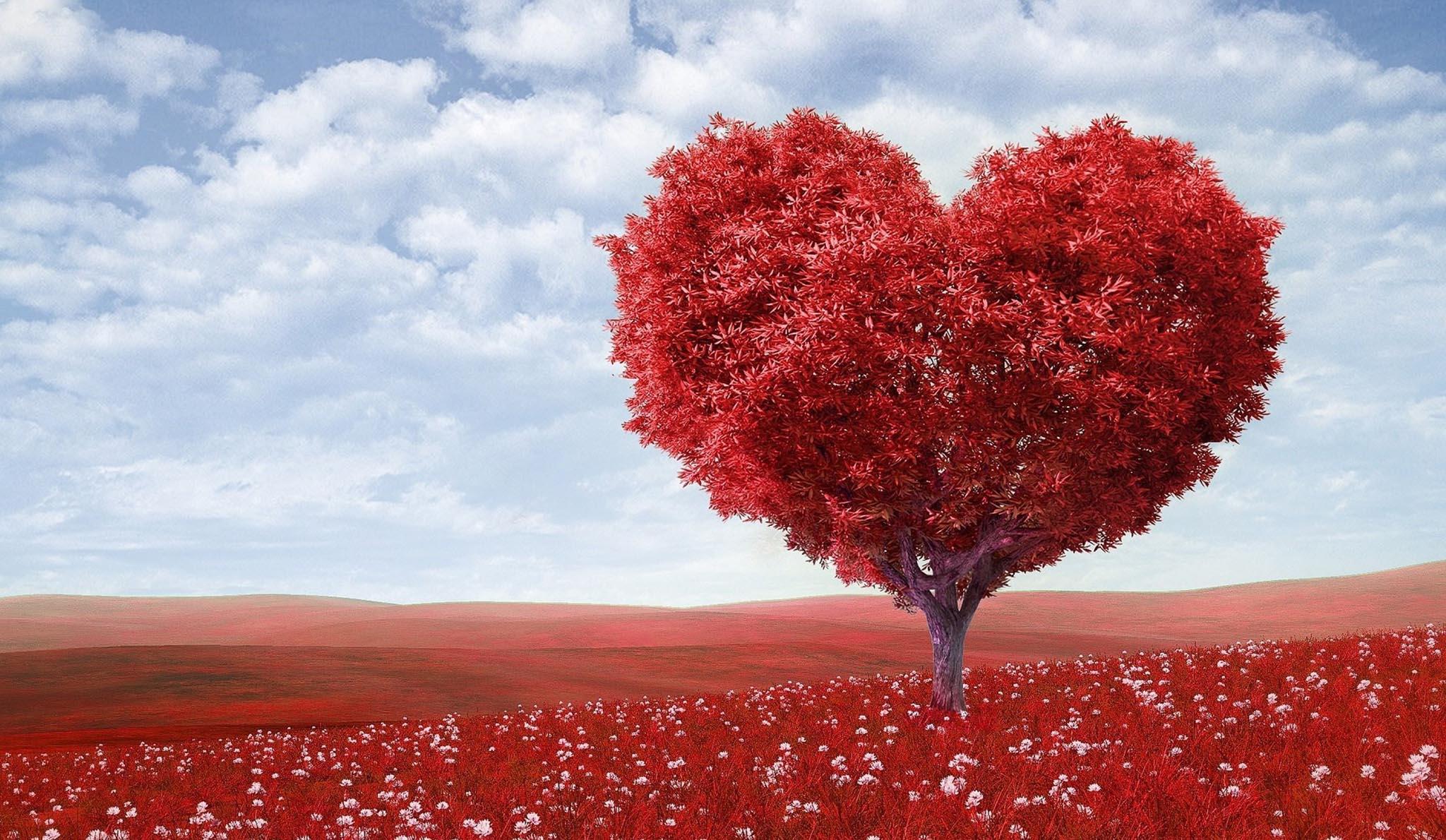 Biochemia miłości